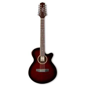 Guitarra Acústica Ashton Modelo DSL29 12 Cuerdas